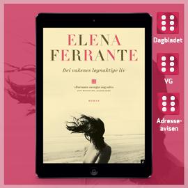 Dei vaksnes løgnaktige liv - Elena Ferrante